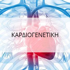 Καρδιογενετικη